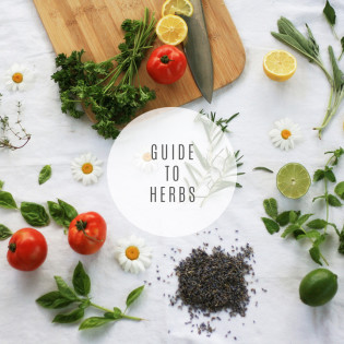 In the Kitchen: A Guide to Herbs