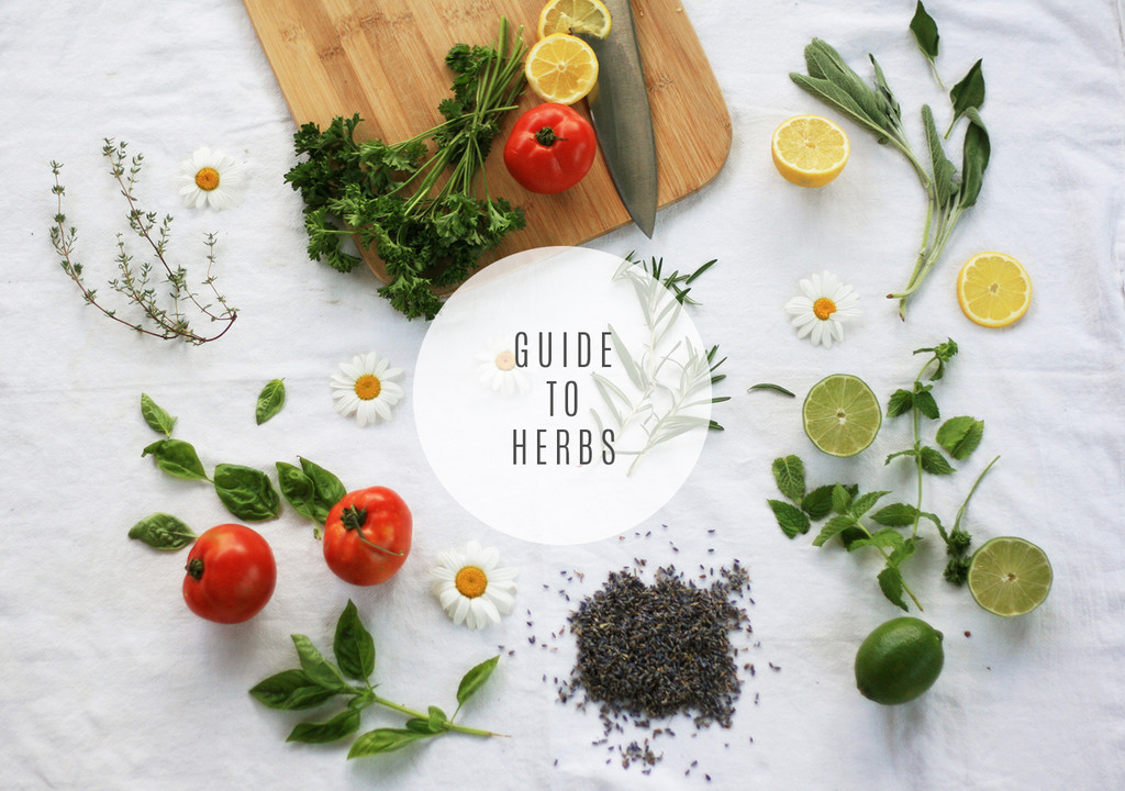 In the Kitchen: A Guide to Herbs - Lily & Val Living