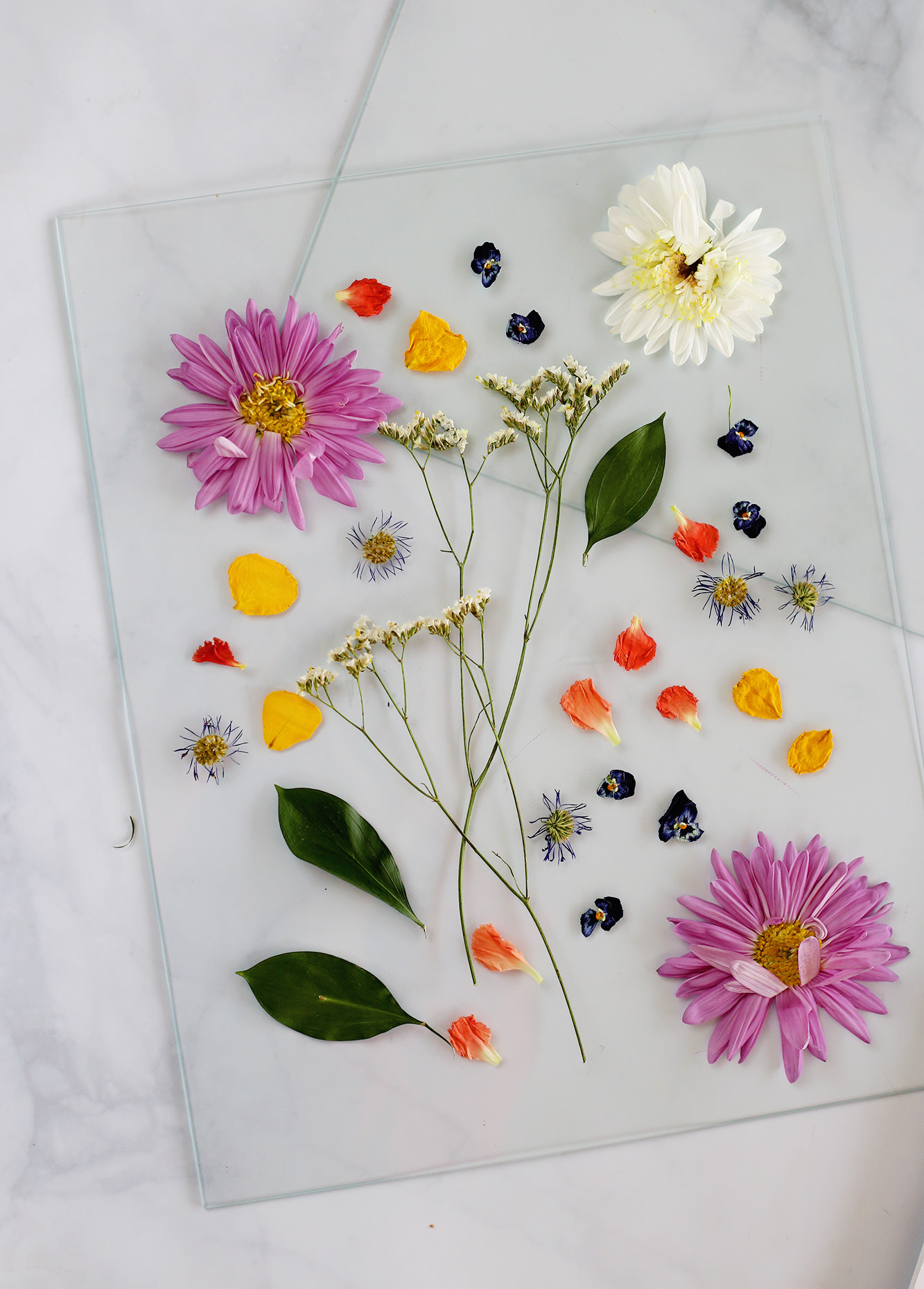 Pressed flowers stay rich in color and don't require any upkeep! Visit Lily & Val Blog to see how we displayed them!