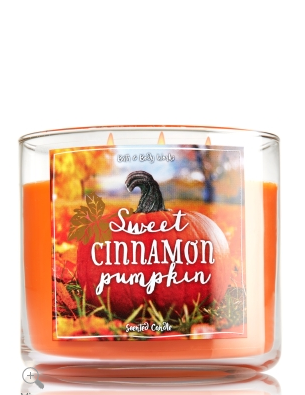 Sweet Cinnamon Pumpkin by Bath and Body Works made it to our top 5 best fall-scented candles! Lily & Val Living