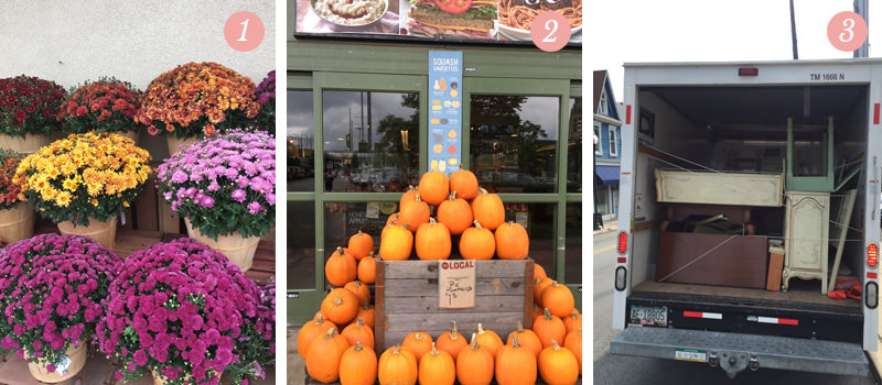 We're excited about all the mums and pumpkins popping up at the grocery stores! See what else we're loving this week on Pretty Ordinary Friday!