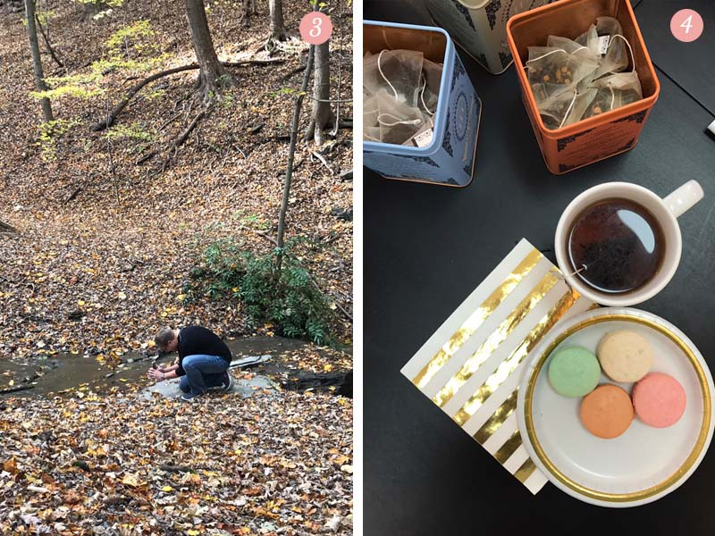 Fall in Pittsburgh and a French Macaron tea party.
