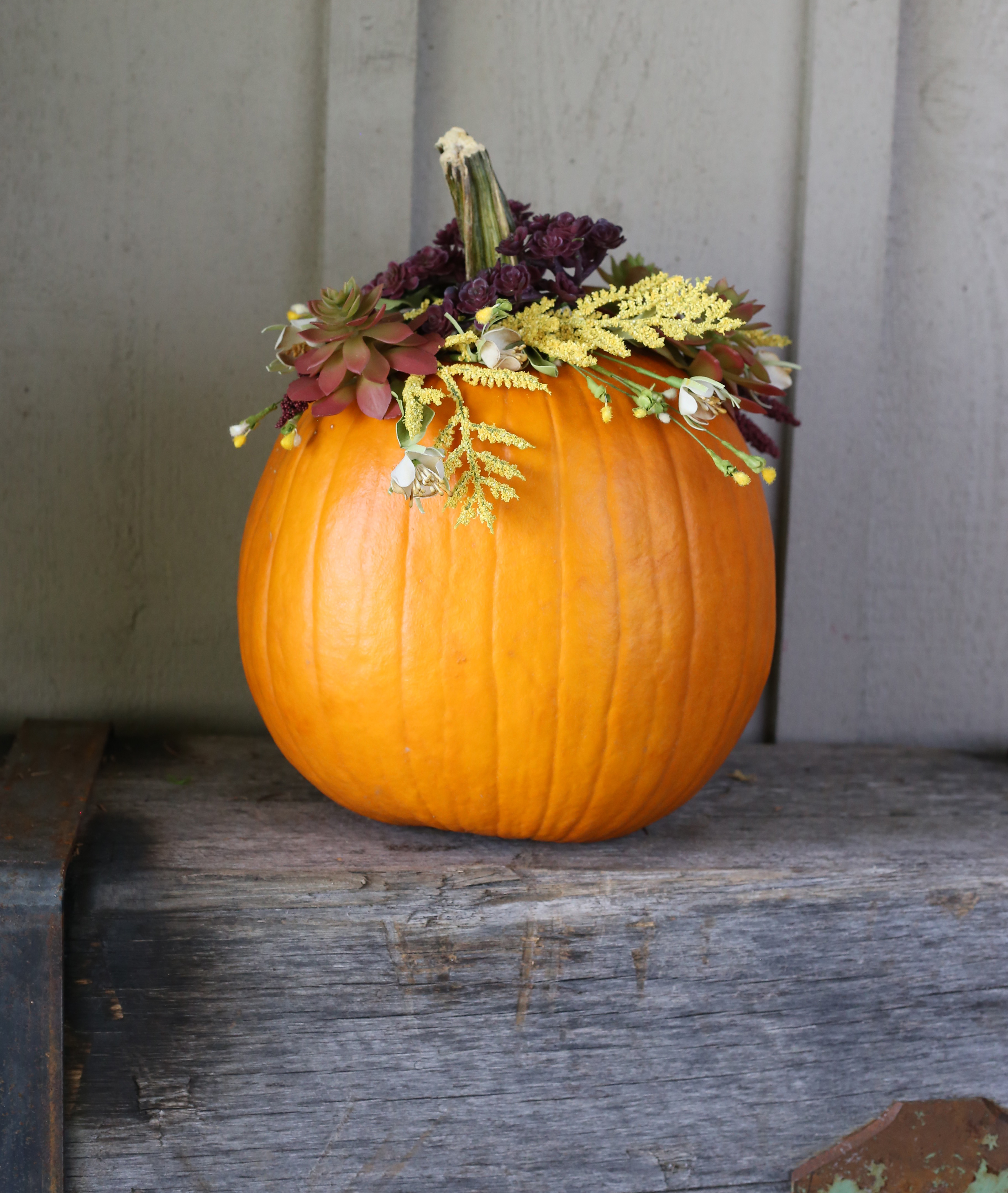 Fall floral pumpkin DIY project via Lily & Val Living!