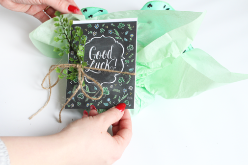 Wishing You Luck Package – March Happy Mail
