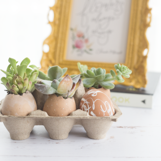 Make This Modern Easter Decor – with Eggs!