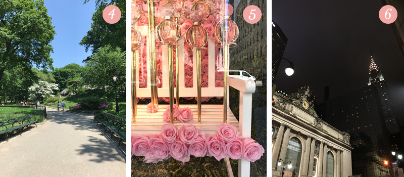 Lily & Val Presents: Pretty Ordinary Friday #53 - NYC Edition shares a view of Central Park, the roses at the Sak's Fifth Avenue window display, Grand Central Station at night