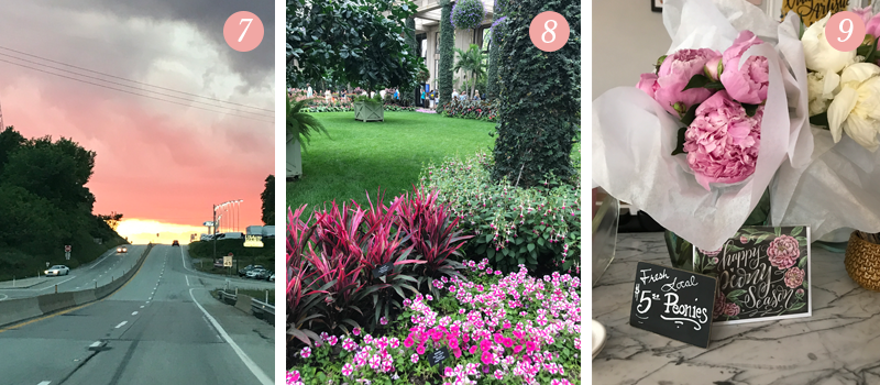 Lily & Val Presents: Pretty Ordinary Friday #54 shares a pink sunset, flowers at Longwood Gardens, Happy Peony Season card at Lily and Val Flagship store in Pittsburgh