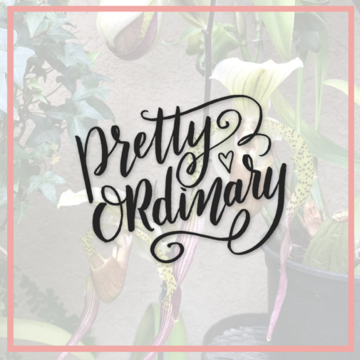 Lily & Val Presents: Pretty Ordinary Friday #54