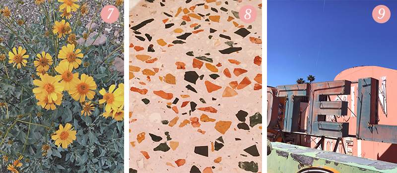 Lily & Val Presents: Pretty Ordinary Friday #92 with bright yellow cone flowers, terrazzo bathroom flooring and the Neon Boneyard in Las Vegas