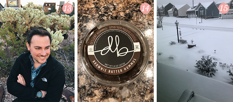 Lily & Val Presents: Pretty Ordinary Friday #92 with handsome husbands, Brownie Batter Hummus and snowy Spring days
