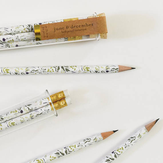 These Beautiful Pencils come in an adorable reusable test tube!