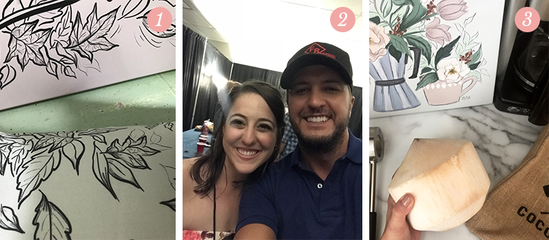 Lily & Val Presents: Pretty Ordinary Friday #95 with Fall launch sneak peeks, selfies with Luke Bryan and coconut water sipping