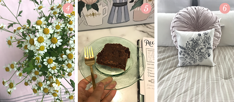 Lily & Val Presents: Pretty Ordinary Friday #96 with daisies from Trader Joe's, Texas Sheet Cake and Fall botanicals pillow