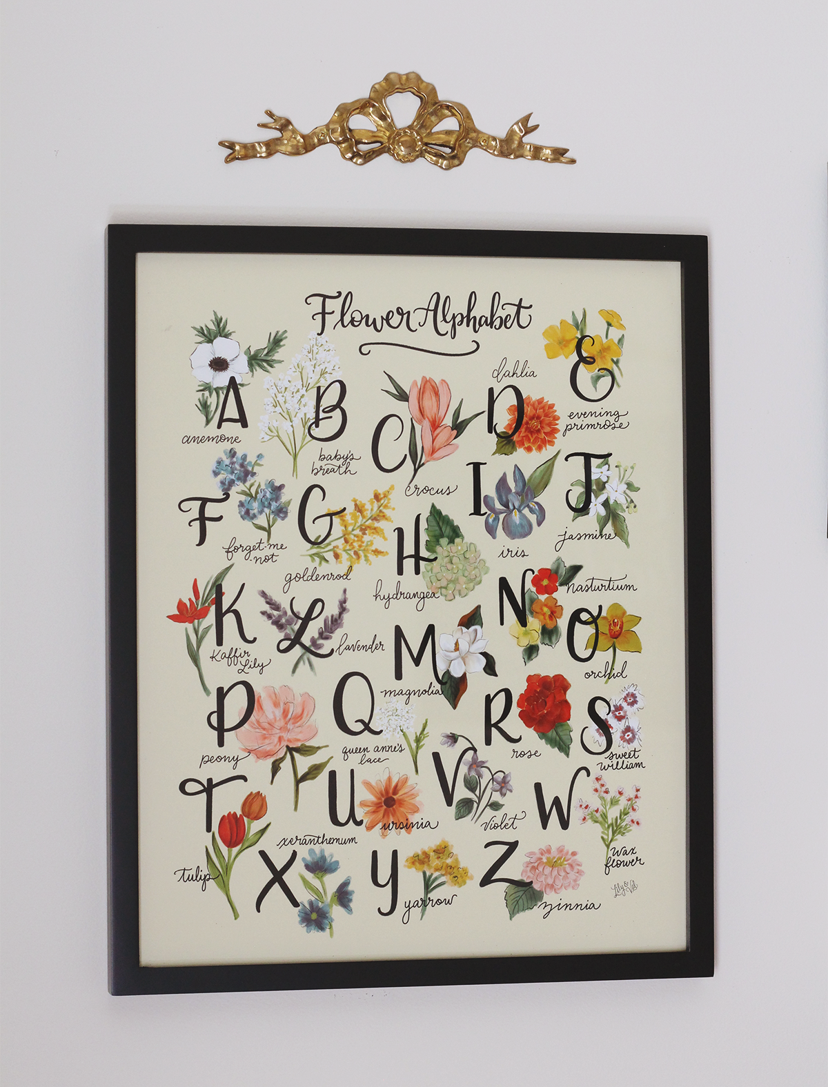 Flower Alphabet by Lily & Val