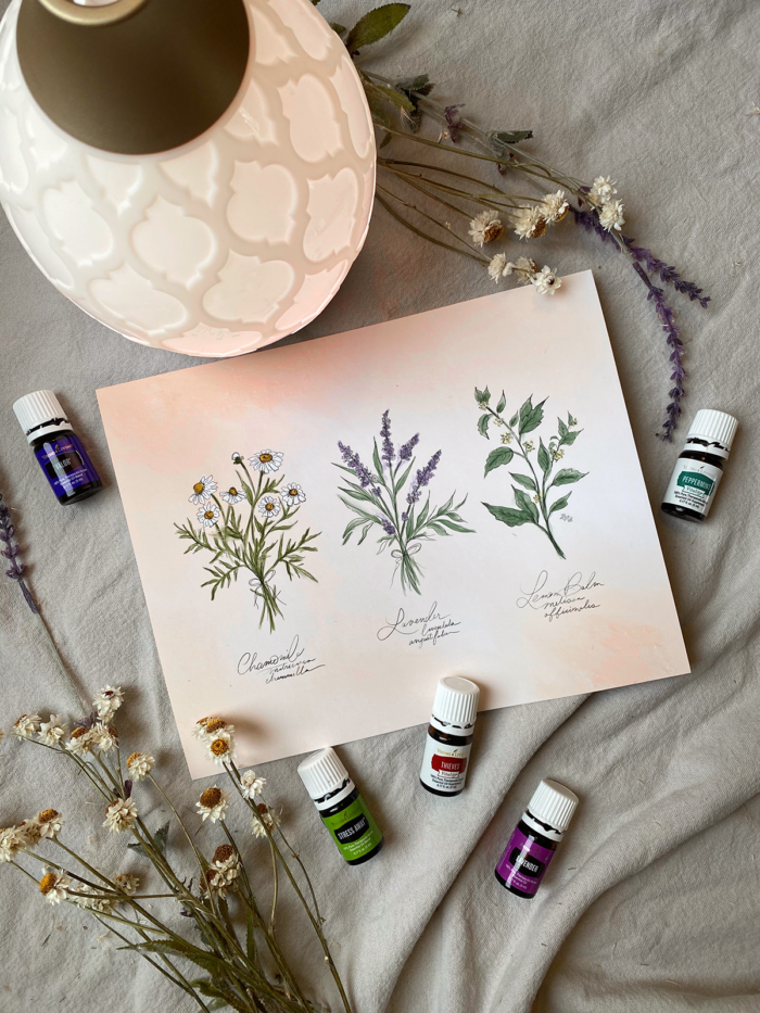 How I'm Starting My Essential Oil Journey