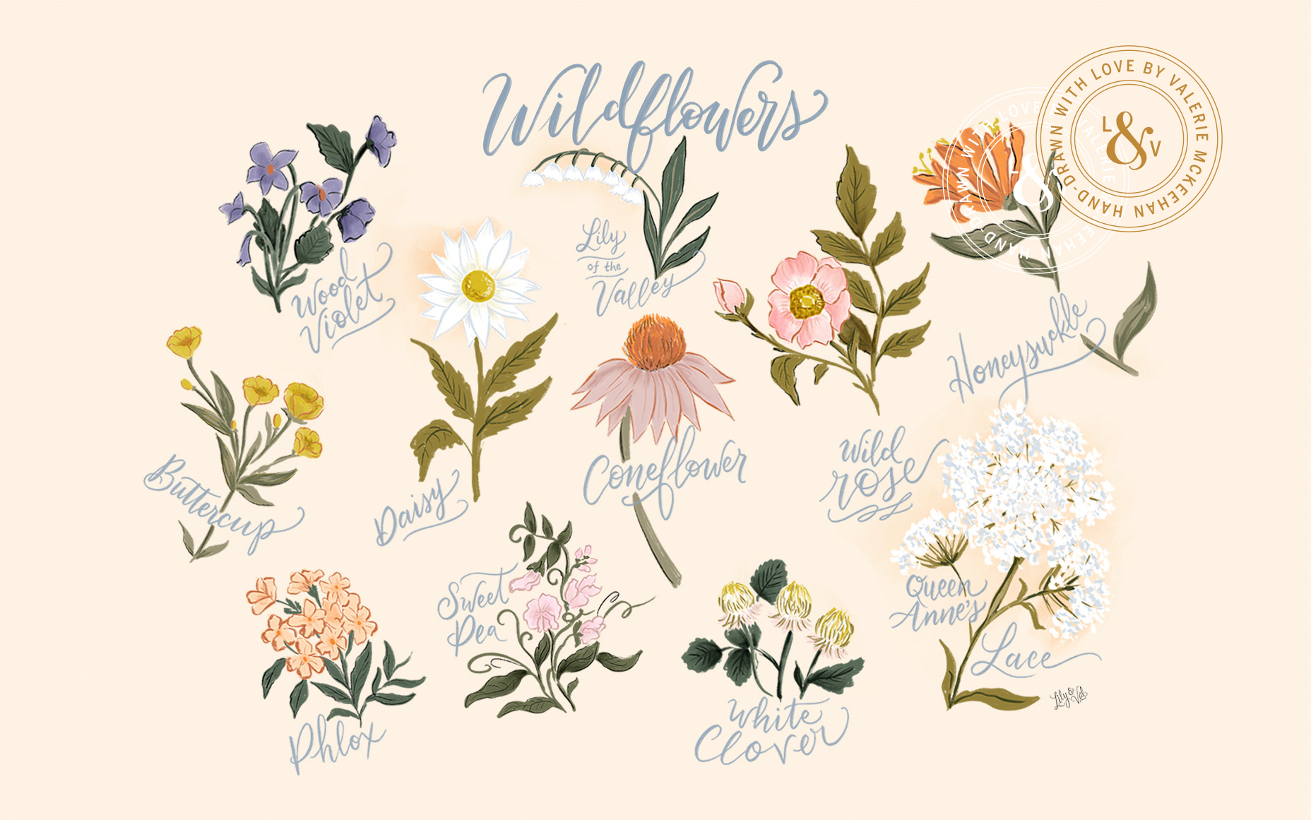 August hand-drawn floral desktop background from Lily & Val